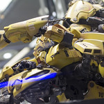 GBWC2014_World_representative_exhibitions-28