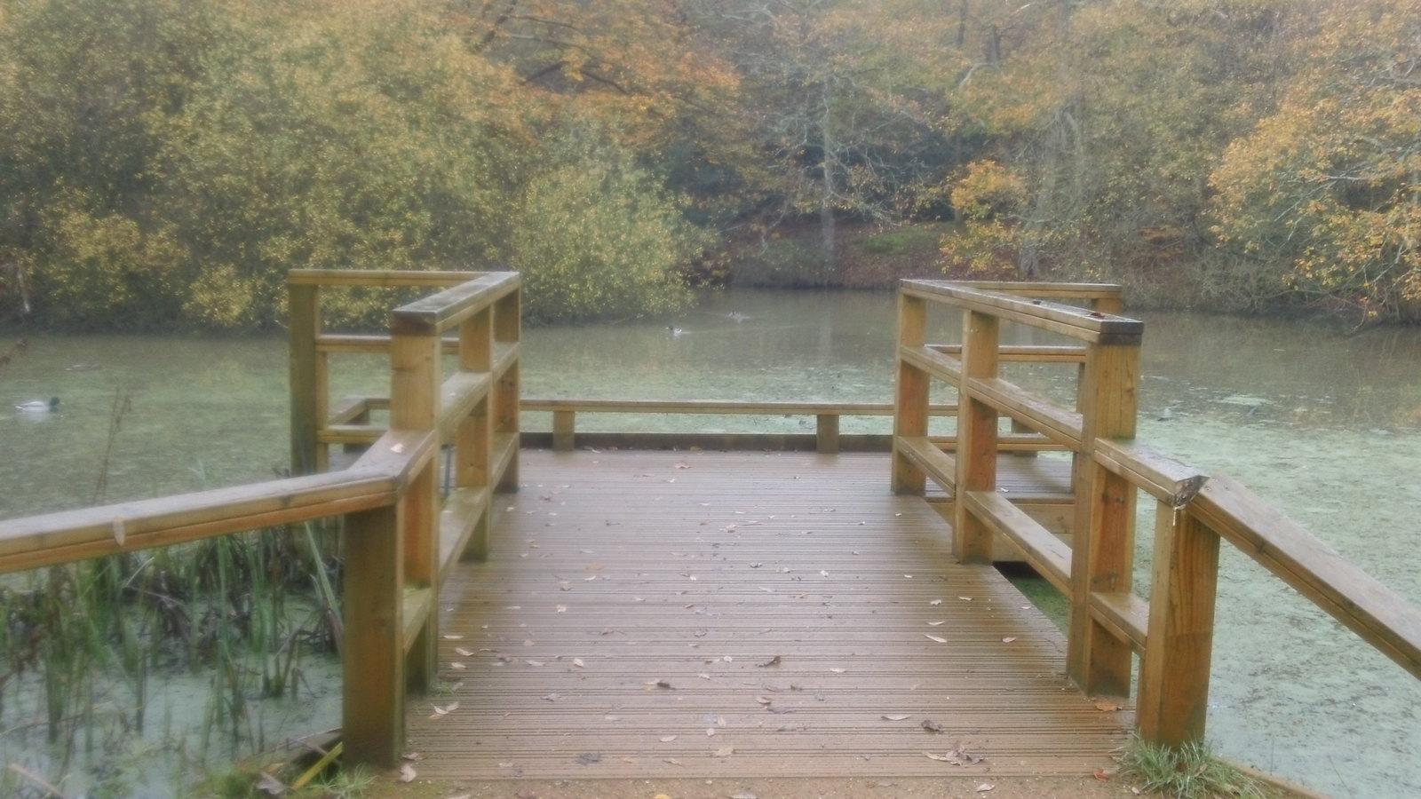 Duckboard Epping Forest