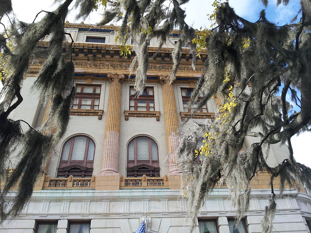 southern live oak draped with spanish moss and the scottish rite masonic center in the background