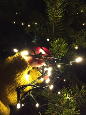 Dressing the tree outside