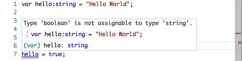 type-error