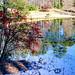 Small photo of Aldridge Gardens, Hoover, Alabama