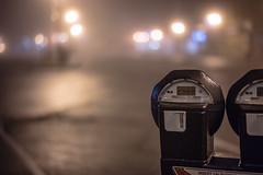 The Night Diaries - Dec 18