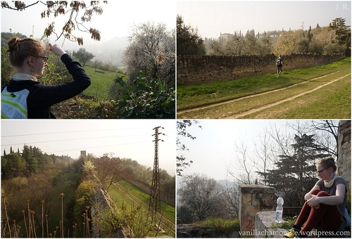 Verona city walls