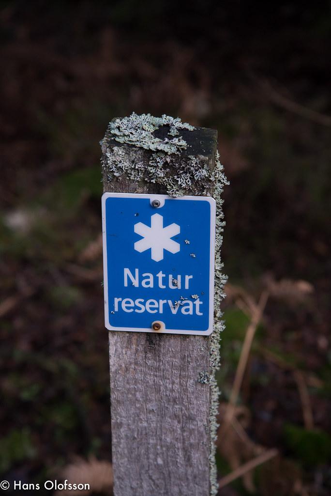 Brak om reservat for urskog