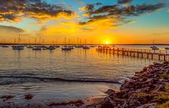 509A8732 - Sunrise Callala Bay Southern NSW Australia
