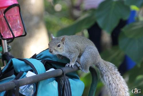 Zoo Miami 14.11.2014 61