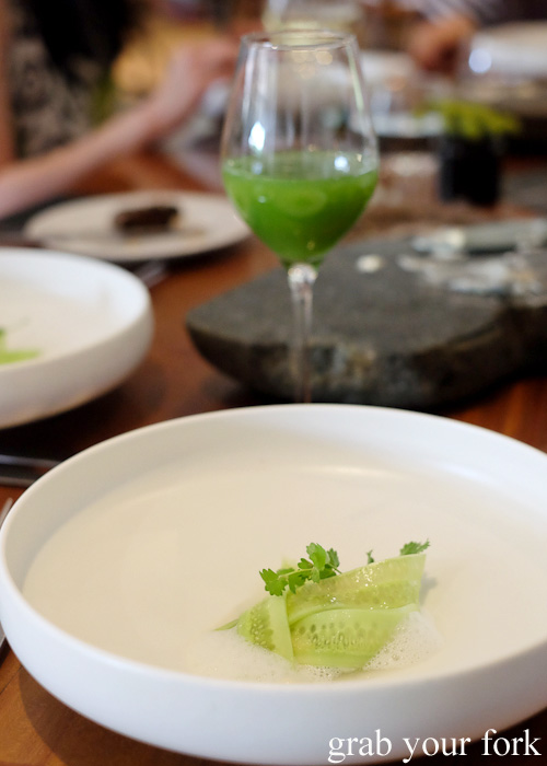 Salted cucumber and oysters at Biota Dining, Bowral