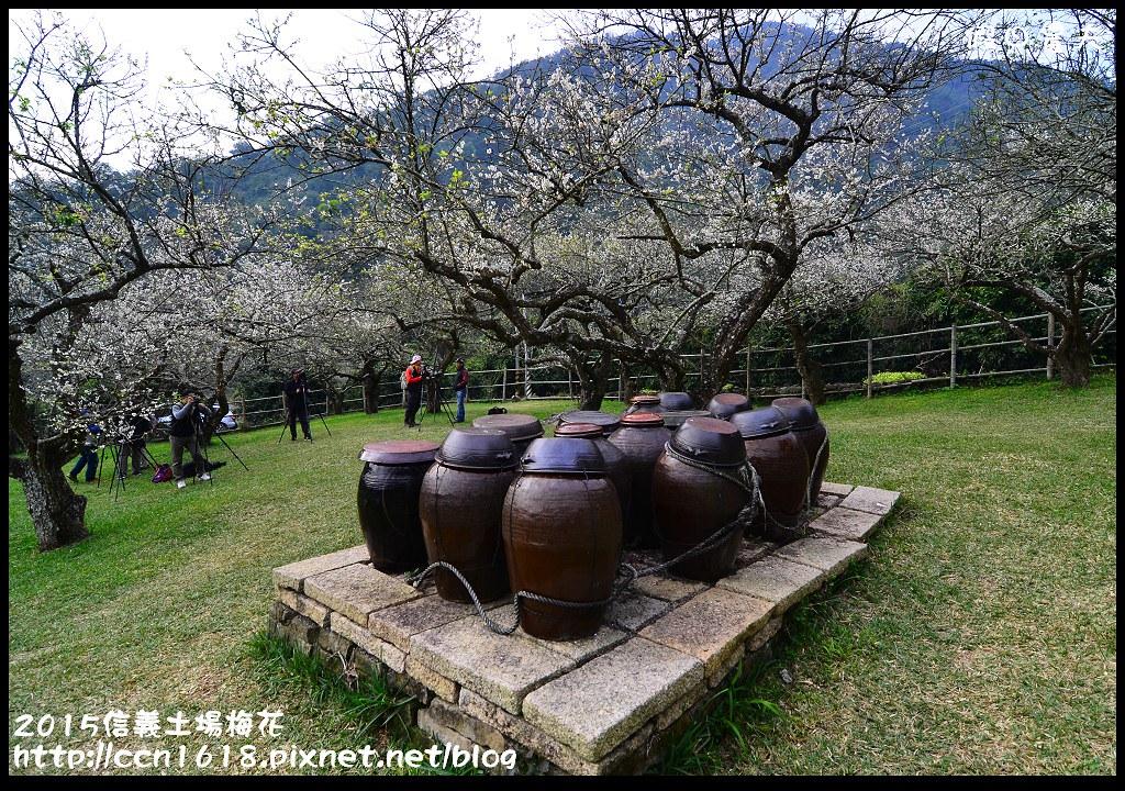 2015信義土場梅花DSC_9248