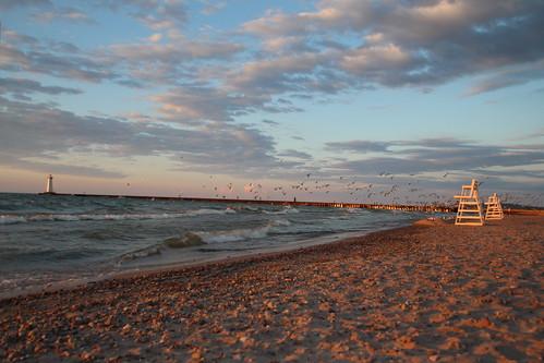 beach sunset soduspt soduspoint sand waves seagulls