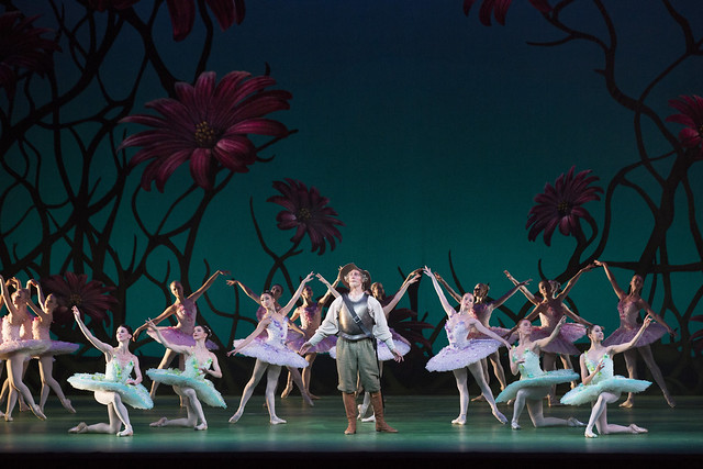 Christopher Saunders as Don Quixote and artists of The Royal Ballet in Don Quixote, The Royal Ballet © ROH/Johan Persson, 2013