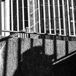 Passing Shadows - 300/365