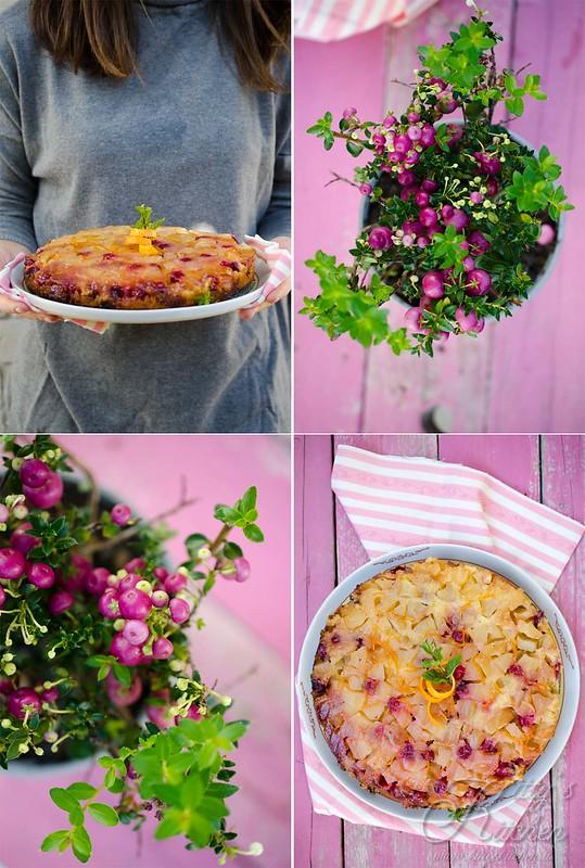 torta rivesciata mele e cranberries