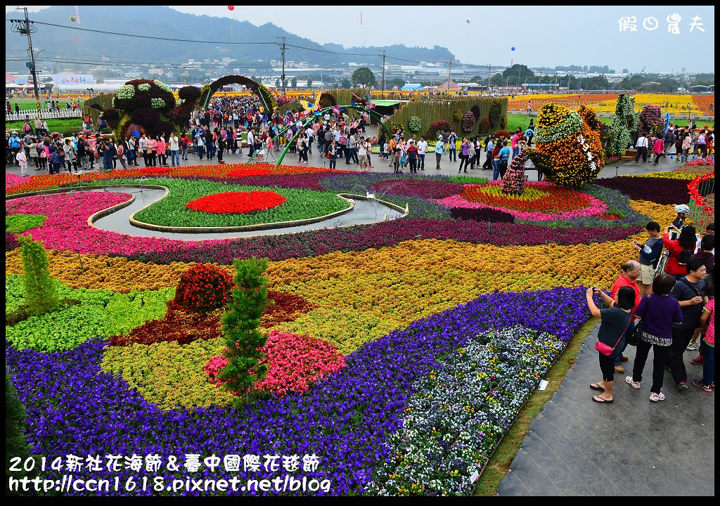 2014新社花海節&臺中國際花毯節DSC_5021