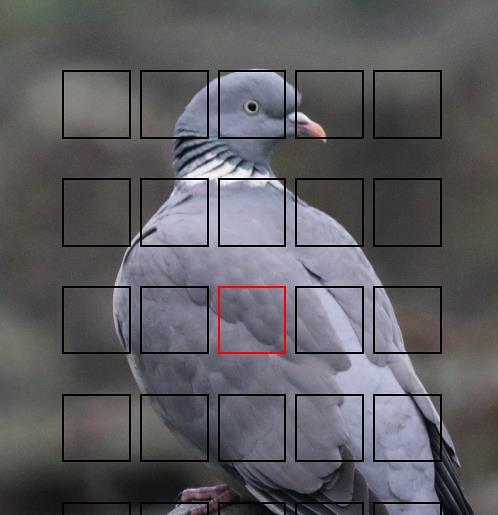 IMAGE: https://farm8.staticflickr.com/7511/15789133477_057ebf3ac0_b.jpg