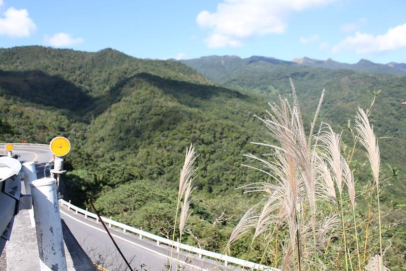 台北往宜蘭。17度C隨拍 (97)
