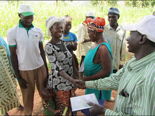 Fighting striga using evening video shows - a farmer trainer introduces himself to residents of Sindala village, Mali