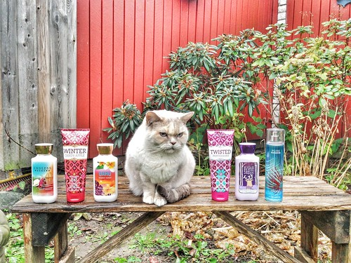 little miss lens louse and the bath & body works batch