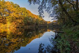 Billede af Fort 7. autumn fall water automne reflections nikon belgium herbst herfst antwerp 28 greatphotographers 1500v60f 1000v40f d7100 simplysuperb tokinaatx116prodx