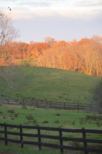 photos photography croom md fall fallcolor fallcolour sunset missnicole maryland