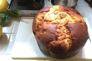 Scarpato Panettone Glazed Chestnut - Loaf
