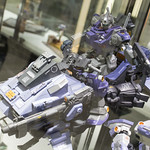 GBWC2014_World_representative_exhibitions-85