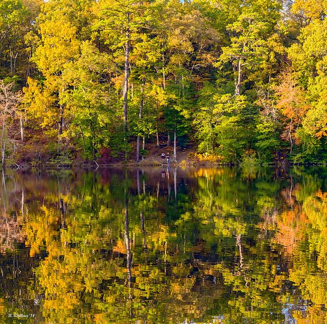 Brian_Autumn Colors 1b_102714_2D