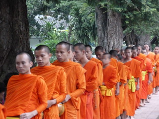 Monjes en la ceremonia de limosnas de Luang Prabang (Laos)