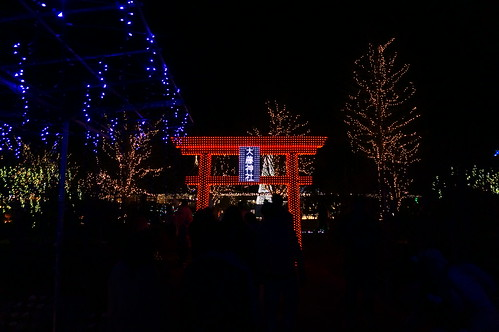 illuminated Torii Flower Fantasy 2015 illumination at Ashikaga Flower Park 37