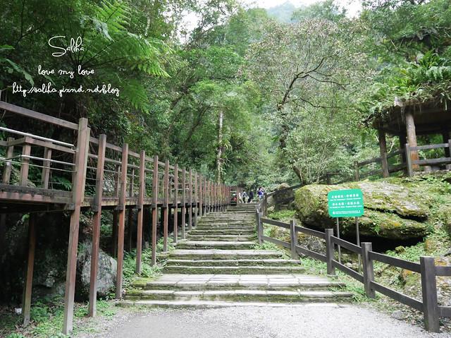 烏來景點內洞森林遊樂區 (7)