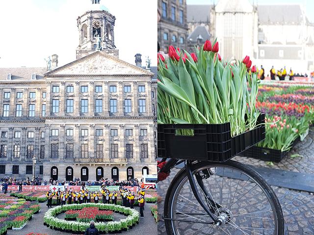 ACC_TulipDay_Palace_bike