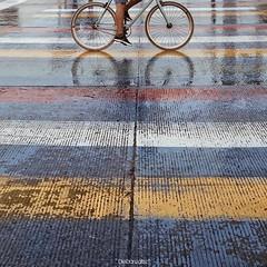 en Instagram, @diegonzalez publicó: El Arte sobre ruedas 🚲#igers5_bicicleta #igerscolombia #yoamobogota #igersbogota • • • • • #BiceRitratto #biciritratti #bici #bicyclelove #bicycling #bicyclelife #bicycle #insta_bicycle #bicycle_photos #bicyclephot