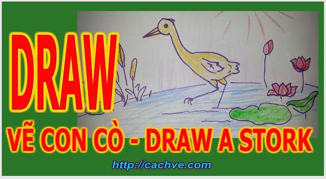 Cách Vẽ con cò - Vẽ con cò cho bé - Vẽ nhanh con con cò