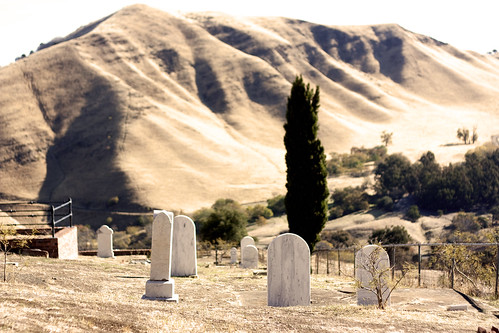 graves on a hill