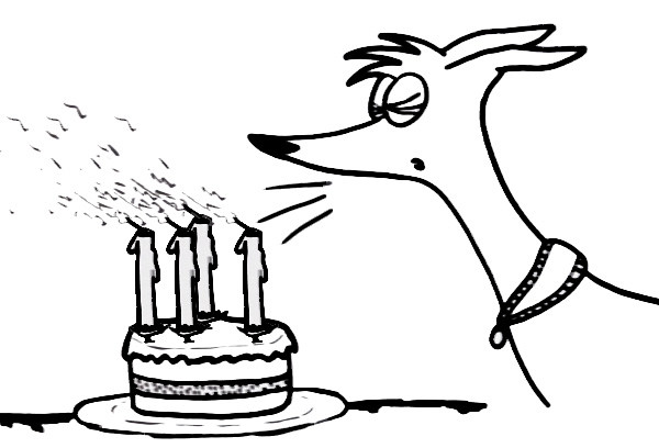 Comic-Whippet-4thBirthday