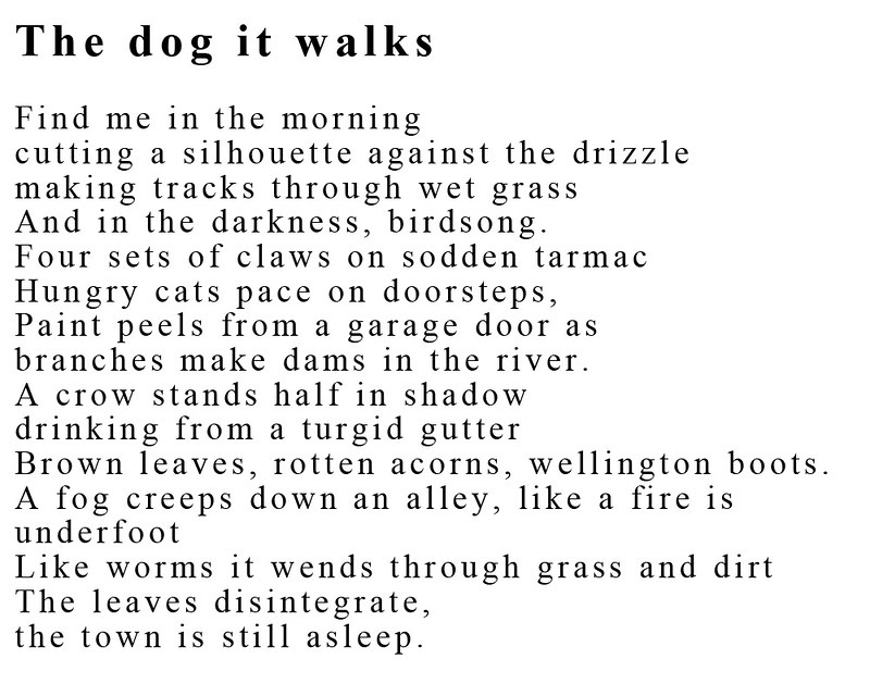 the dog it walks