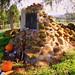 Burial Site of Nancy Ward,