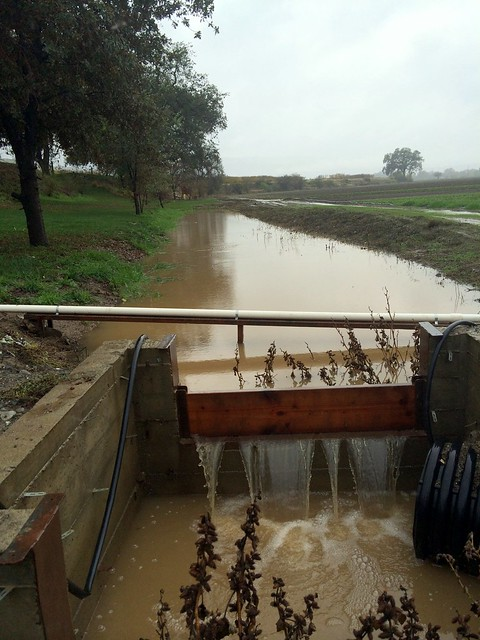 你的农场新闻照片-雨!