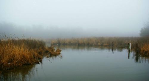 morning panorama colour art fog digital creek pentax maryland calm marsh chesapeake km saltmarsh stmaryscounty pentaxart pentaxdalf35561855mmaflens