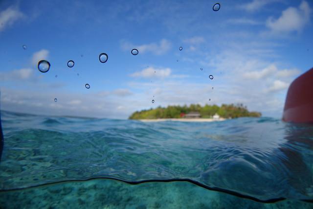 09172014Underwater Camera Test (3)
