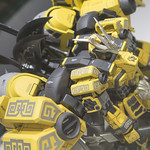 GBWC2014_World_representative_exhibitions-77
