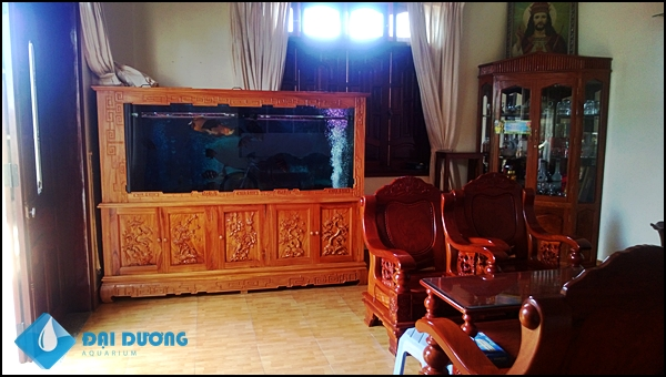Bể cá rồng chạm tinh tế tại Bảo Lộc