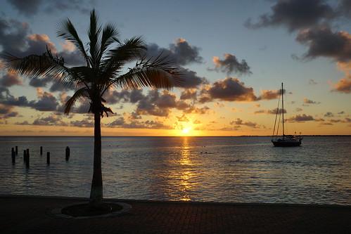 sunset sea holiday tree beach boat sand sony palm explore bonaire a77 carabbean