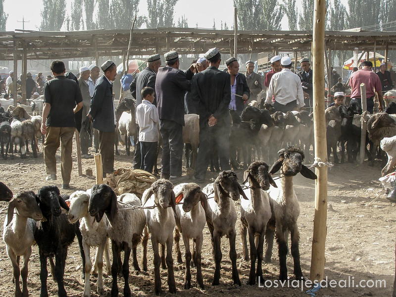 Kashgar-57