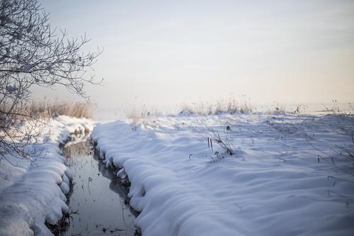 winter snow sunrise canon river germany landscape bayern 50mm bokeh f14 chiemsee prien 6d canonef50mmf14usm