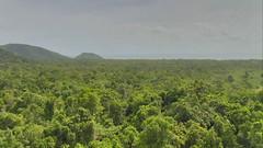 Cape Tribulation, Queensland