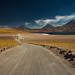 Laguna Miscanti - Atacama - Chile by tilapia28