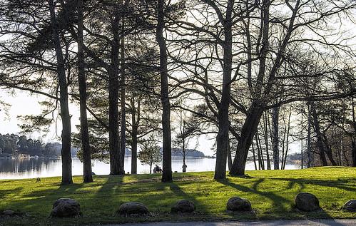 trees sea nature suomi finland landscape evening seaside spring outdoor may silhouettes balticsea rauma 18125mmf3556dc