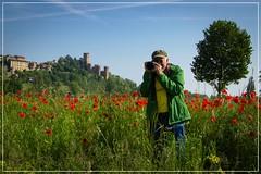 2016-05-07-papaveri a castello 2-0345_Fotor