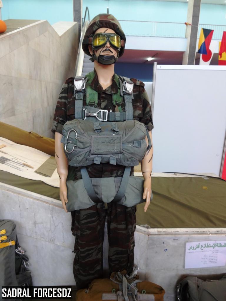 البذلات الجيش الوطني الشعبي الجزائري [ ANP / GN / DGSN / Douanes ]  - صفحة 4 27890069016_b56398e5fb_o